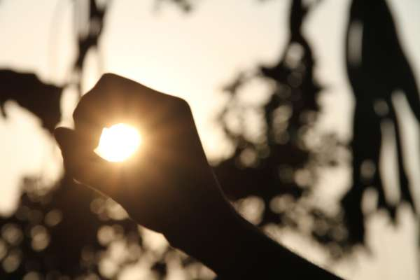 The Sun Is What Gives Life, The Sun Is What Defines Beauty. - My Click My Pick