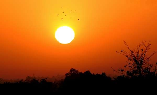 Bright Morning - My Click My Pick